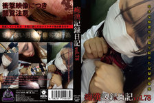Molester record diary vol.78