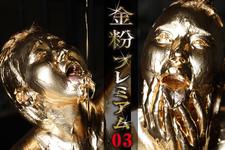 Gold powder premium 03